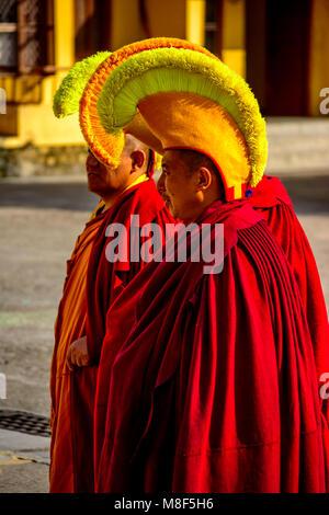 Tibetan Bhudhist Monk with Yellow Hat going for prayer, Gyuto Monastry, Dharmashala, Himachal pradesh, India - Stock Photo