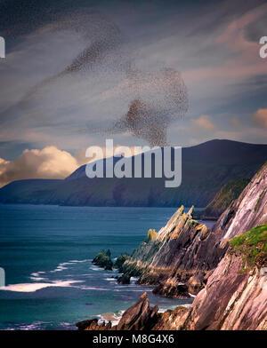 IE - CO.KERRY: Slea Head on the Dingle Peninsula - Ring of Kerry - Stock Photo