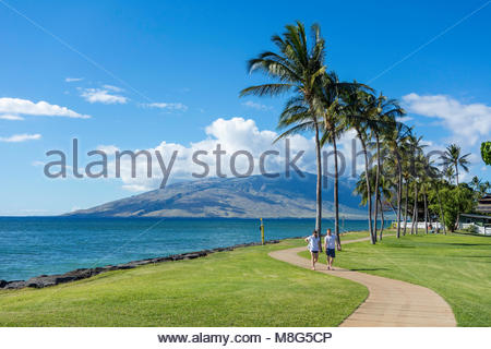 Palm trees line the seafront promenade in Kalama Park in Kihei island of Maui in the state of Hawaii USA - Stock Photo