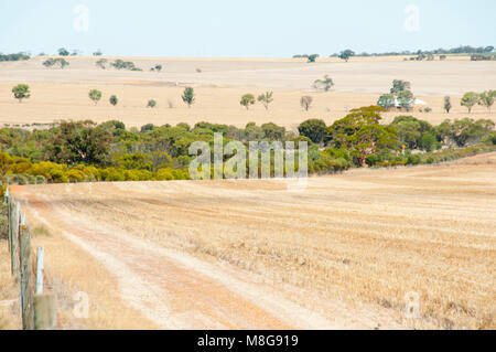 Harvested Wheat Fields - Australia - Stock Photo