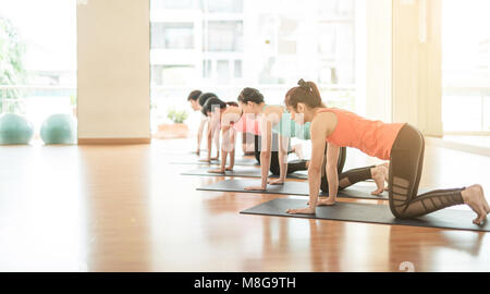 beautiful young women doing paired stretching exercises