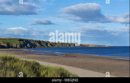 St Cyrus Beach in Aberdeenshire looking North on one Fine Autumn day, with the exposed beach from the low tide stretching - Stock Photo