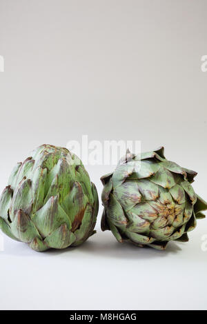 Two artichokes on white background with copy space - Stock Photo