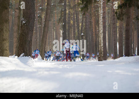 KAZAN, RUSSIA - March, 2018: Athletes skiers running Kazan ski marathon in the winter woods - Stock Photo