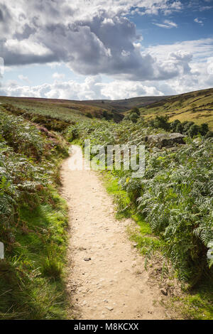 Gentle walk through the hills of Bronte Country - Stock Photo