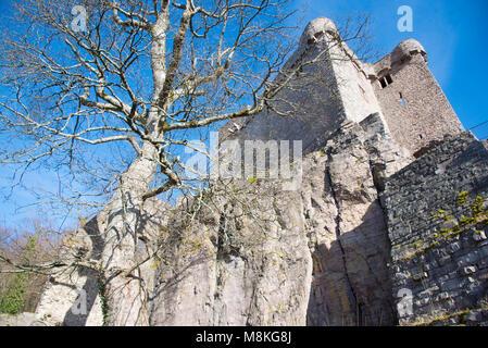 castle ruin in the heights of Baden-Baden