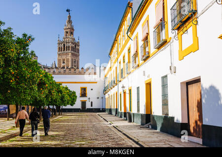 Seville, Andalusia, Spain : People walk at the Patio de Banderas square in Santa Cruz district with Giralda bell - Stock Photo