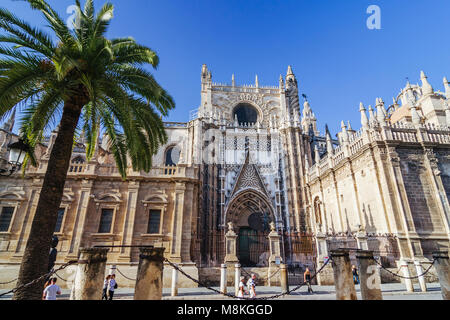 Seville, Andalusia, Spain : Tourists walk past the Puerta del Príncipe (Door of the Prince) of  the Unesco listed - Stock Photo