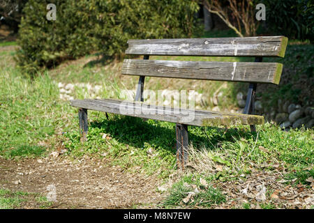One wooden bench on sunny day in Italy, public parkland. - Stock Photo