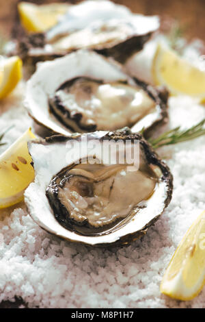fresh just opened oysters and slice of lemon on rustic wooden background - Stock Photo