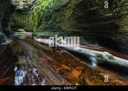 Finnich Glen gorge, also known as the Devil's Pulpit near Killearn, Scotland, UK - Stock Photo