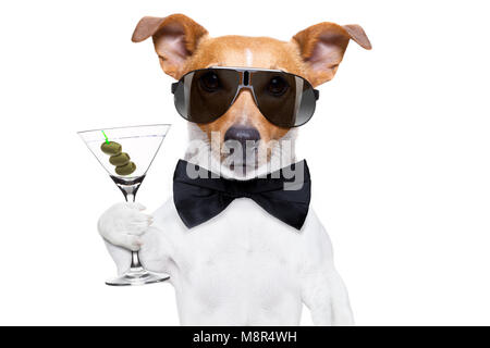drunk jack russell dog toasting  and drinking a cocktail  martini drink with olives, isolated on white background - Stock Photo
