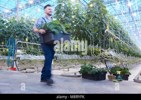 Workday at Modern Plantation - Stock Photo