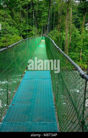 A suspension foot bridge over the Sarapiquí river allows further exploration of the rainforest biodiversity in Tirimbina - Stock Photo