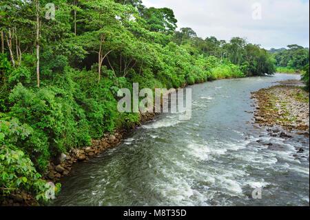 The Sarapiquí river flows through the Tirimbina Biological Reserve in Costa Rica. - Stock Photo
