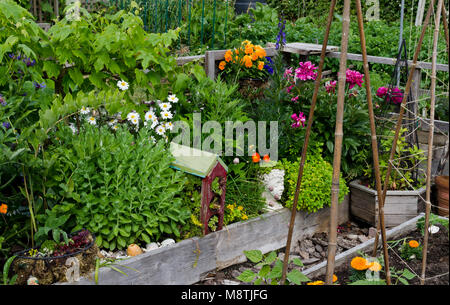 Beautiful and artistic garden plot in a community garden Stock Photo ...