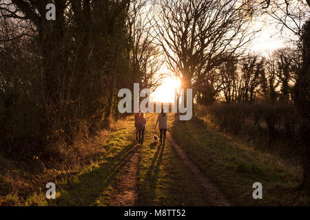 A family walking a path in the English countryside, on a late afternoon - Stock Photo