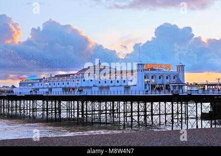 Brighton's Palace Pier illuminated at early twilight, against a beautiful sunset with a murmuration of starlings - Stock Photo