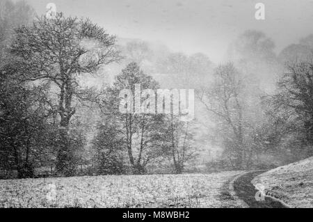 Blizzard near Milldale, Dove Valley, Peak District National Park, Derbyshire - Stock Photo