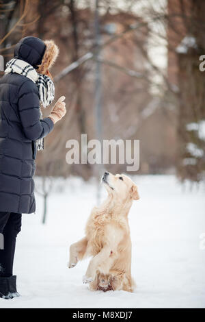 Photo of young woman in black jacket training dog in snowy park - Stock Photo