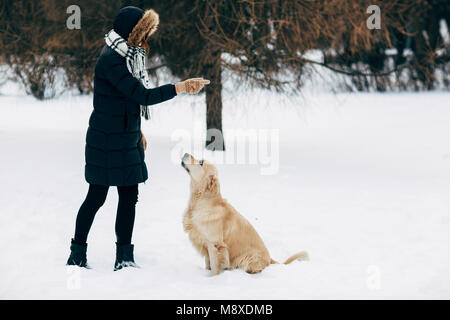 Picture of woman with labrador on walk in winter park - Stock Photo