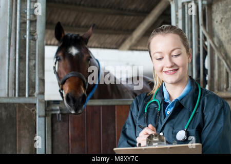 Female Vet Examining Horse In Stable - Stock Photo