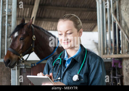 Female Vet With Digital Tablet Examining Horse In Stable - Stock Photo