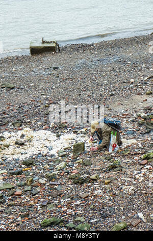 A man looking and searching on the foreshore of the River Thames at low tide. - Stock Photo