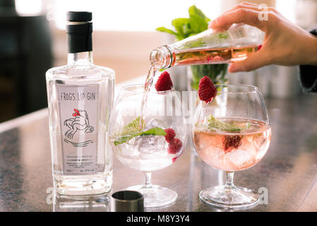 Gin and tonic drinks being prepared. - Stock Photo
