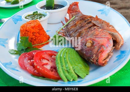 Deep Fried Red Snapper with avocado and tomato slices along with rice and black black beans - Stock Photo
