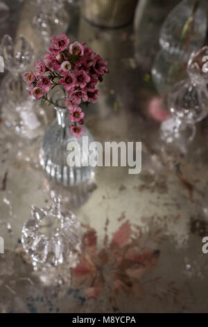 Table decorated with pink rosemary flower in glass crystal vase - Stock Photo