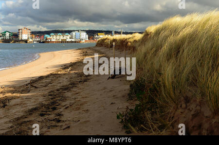 View of Exmouth from the Exe estuary nature reserve at Dawlish Warren. - Stock Photo