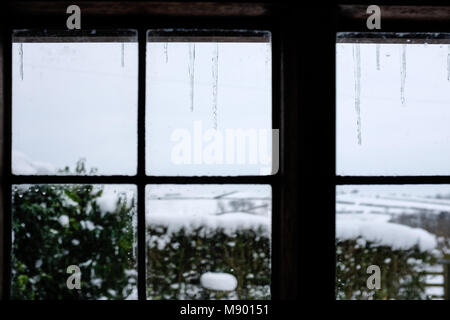 Icicles hanging outside window with snow in background - Stock Photo
