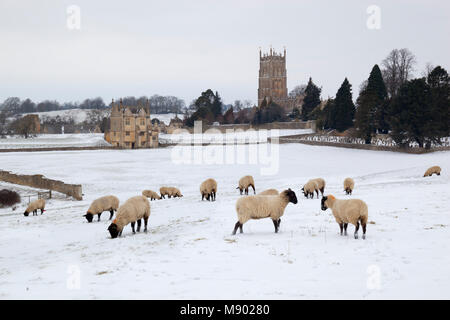 East Banqueting House of Old Campden House and St James' church with sheep in the coneygree field in winter snow, - Stock Photo