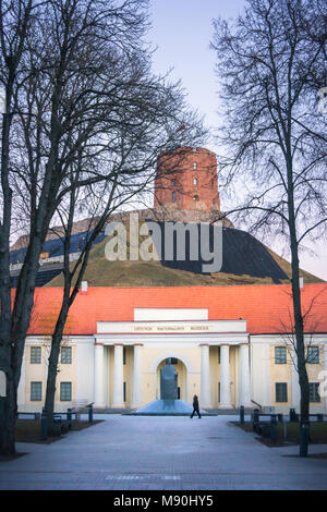 National Museum of Vilnius - Lithuania - Stock Photo