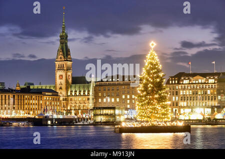 Alstertanne auf der Binnenalster in Hamburg, Deutschland, Europa - Stock Photo