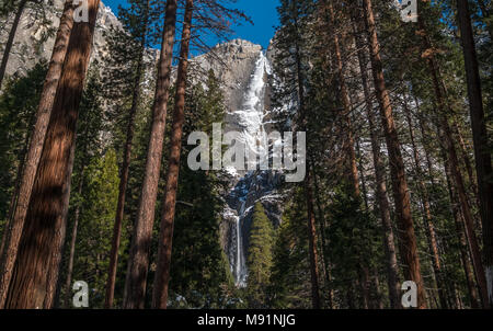 View of Yosemite Frozen Water Fall Through Wooded Forest - Stock Photo