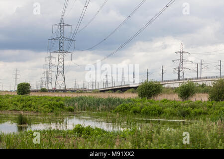 Rainham, UK. 19th May, 2017. Rainham Marshes is an area of medieval marshland on the Thames Estuary managed as a nature reserve since 2000 by the RSPB - Stock Photo