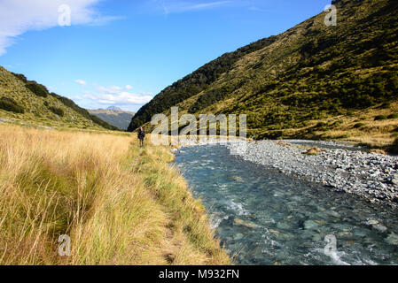 The Amazing Earnslaw Burn Track, location for the Hobbit movies Glenorchy, New Zealand - Stock Photo