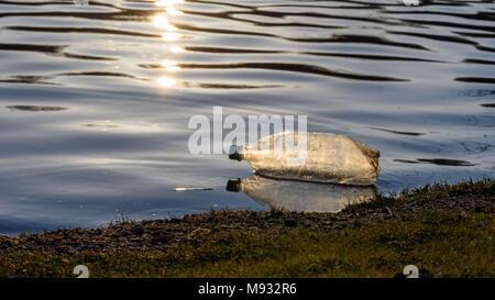 single plastic water bottle litter floating along shoreline at sunset - Stock Photo