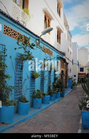 A Narrow, Winding Alleyway in the Kasbah des Oudayas, Rabat, Morocco, with Numerous Planters and Decorative Windows and Doors - Stock Photo