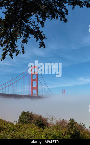 The iconic Golden Gate Bridge, with low fog under the bridge, on an early spring morning, San Francisco, California, United States. - Stock Photo
