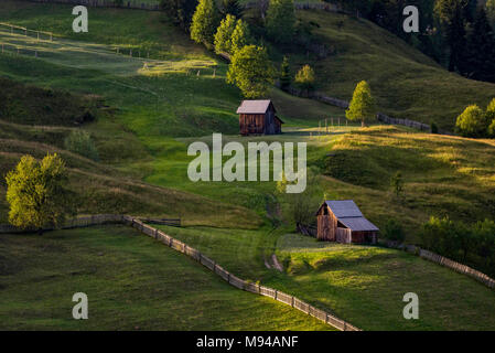 Fascinating natural setting of Bucovina region in Romania with green rolling hills in the sunset - Stock Photo