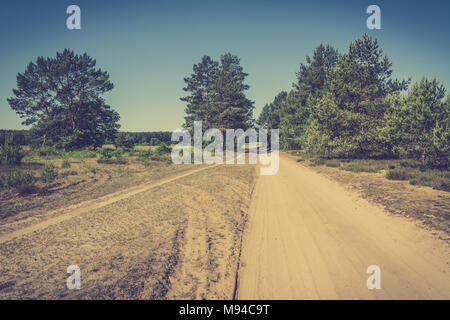 Dirt road and pine trees on the roadside, dry terrain in Poland, summer landscape, vintage photo - Stock Photo