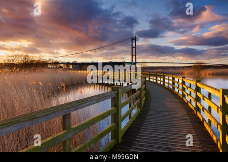 The Water's Edge Country Park in Barton-upon-Humber, North Lincolnshire, UK. The Humber Bridge towers over the park's Visitor Centre. - Stock Photo