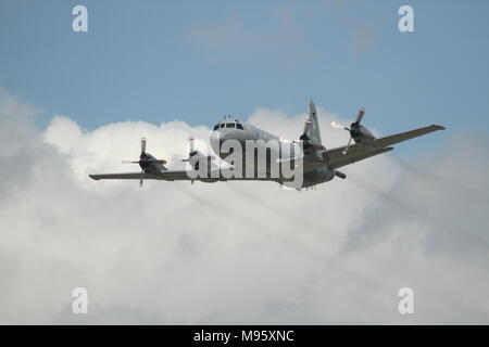 Photo of the C-130 Hercules in flight at the Hamilton Airshow - Stock Photo