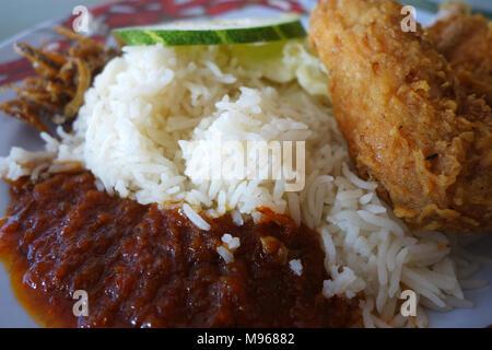Nasi lemak traditional malaysian spicy rice dish - Stock Photo