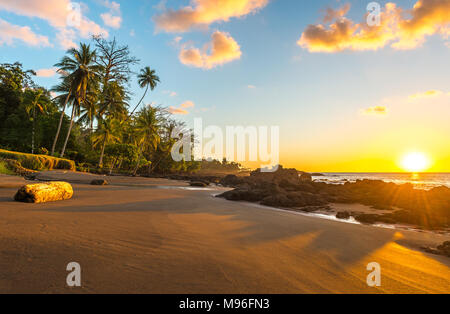 Sunset along the Pacific Ocean coast of Costa Rica with lovely tropical palm trees inside Corcovado national park, Osa Peninsula, Central America. - Stock Photo