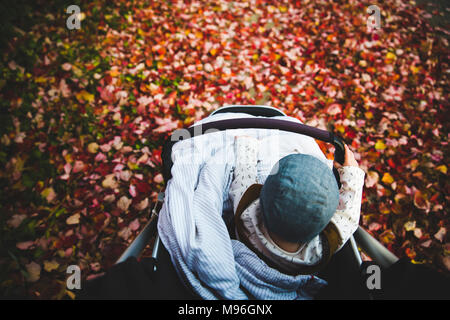 Baby sitting in stroller around leaves - Stock Photo