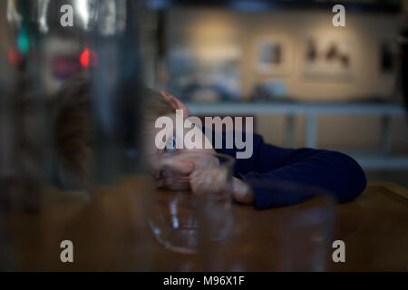 Young, tired child resting head on table in restaurant, sucking thumb Stock Photo